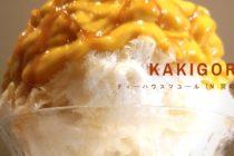 田園都市線沿いで絶品「かき氷」を食べたいなら宮崎台のティーハウス マユール一択でいいと思うよ