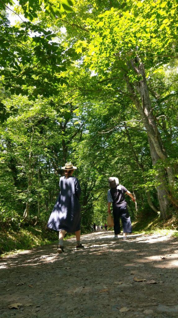 【画像】戸隠神社を歩く嫁と母