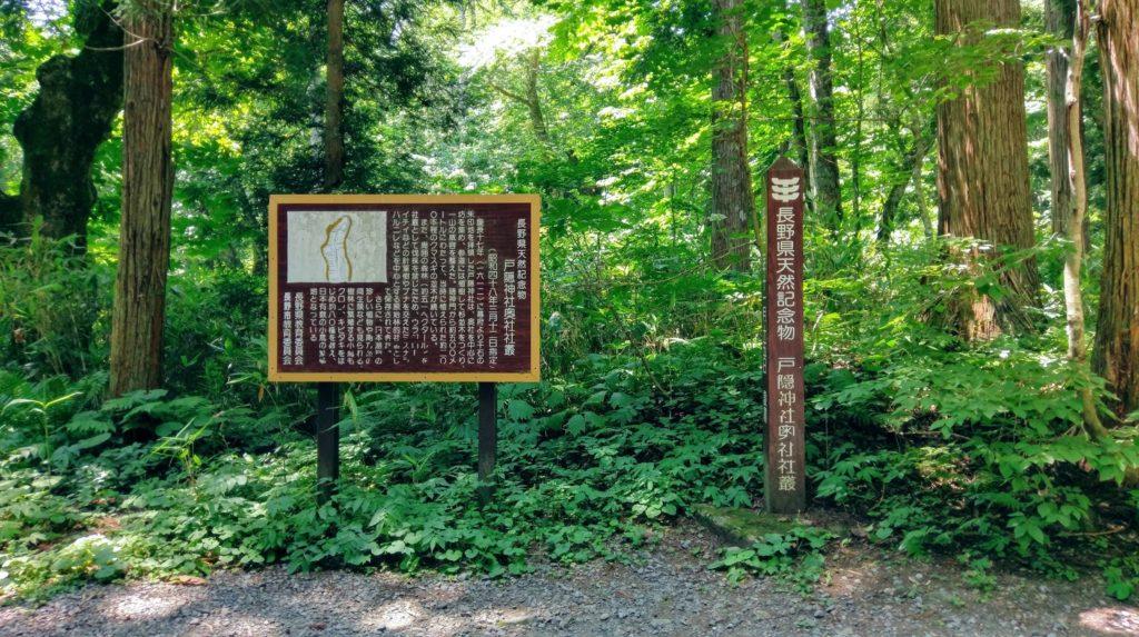 【画像】戸隠神社までの道のり