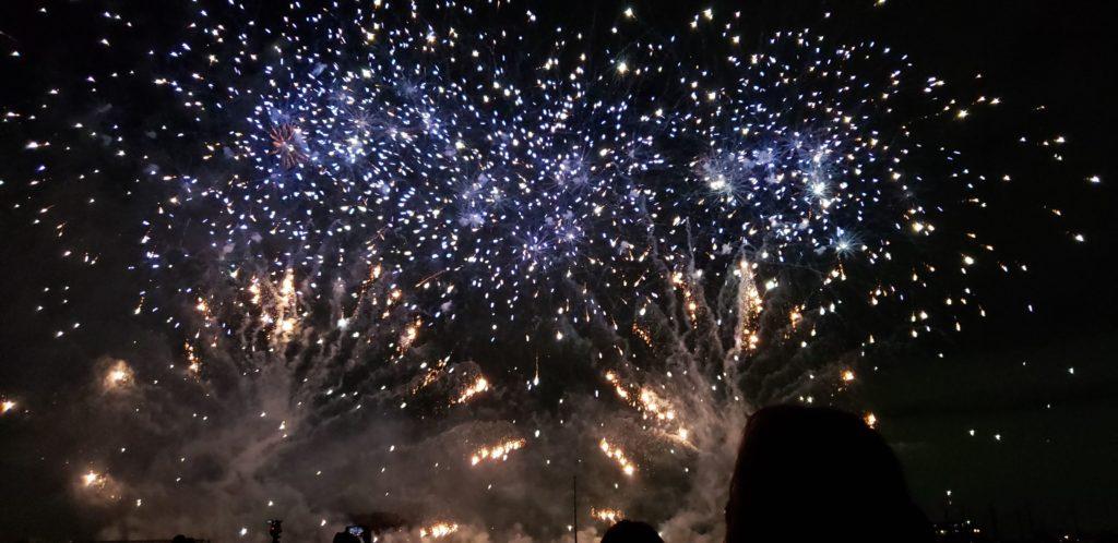 【画像】二子玉川花火大会の花火写真が宇宙みたい